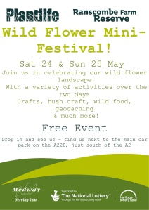 Wild Flower Mini-Festival 24 & 25 May 2014 Ranscombe Farm Reserve