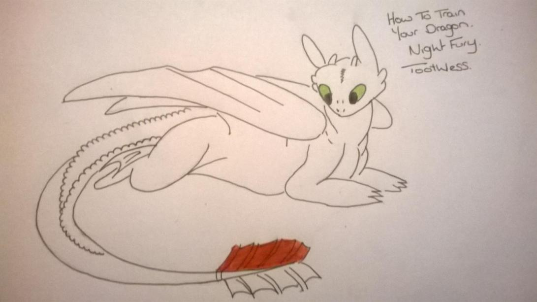 9 HOW TO DRAW TOOTHLESS FROM HOW TO TRAIN YOUR DRAGON 1