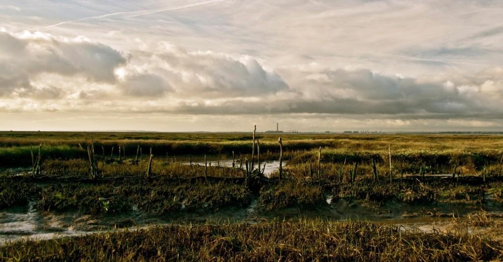 simon_fowler_estuary_images_00-copy-e1461594858678